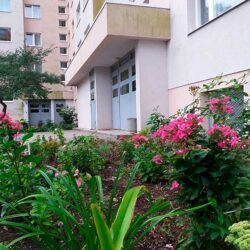 блог недвижимости таллинн
