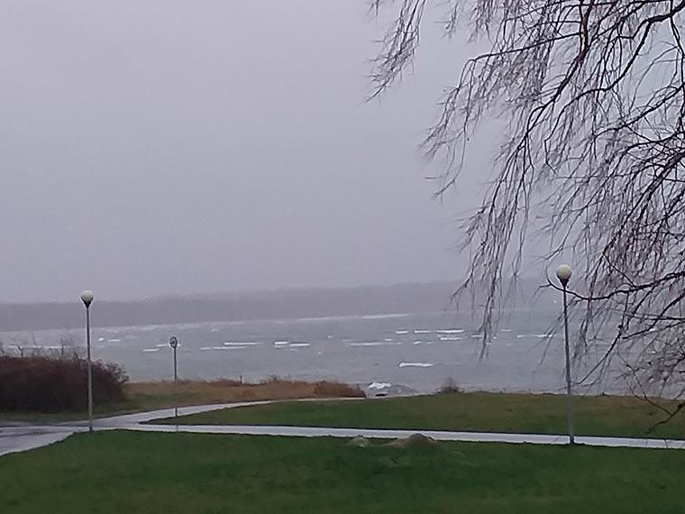 Снять квартиру у моря Таллин